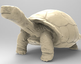 3D printable model Galapagos Turtle