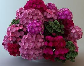 3D Plants in Pot
