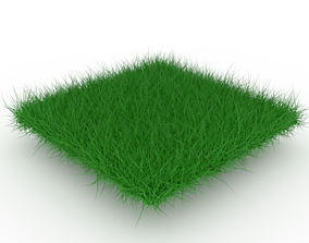 3D model realtime cgtrader Grass