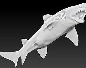 3D printable model great shark