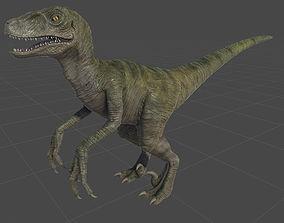 Raptor 3D asset