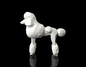 Poodle Low Poligonal 3D asset
