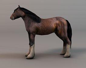 3D asset Heavy draft horse