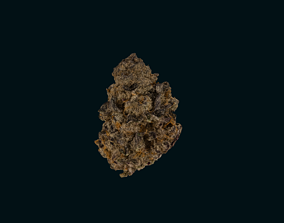 Marijuana Flower-Purple Punch 3D model