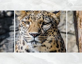 3D model Triptych Wall Art Leopard Portrait