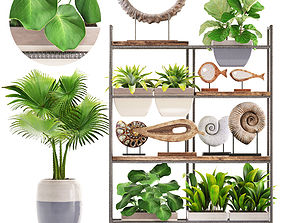 3D model rack with the decor of figurines and plants