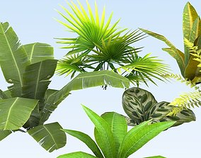 3D asset Tropical vegetation set