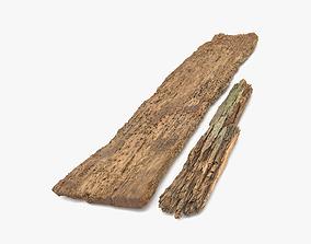 Rotten Planks Eaten 3D model