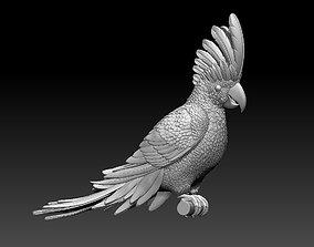 interior parrot cacadu 3D printable model