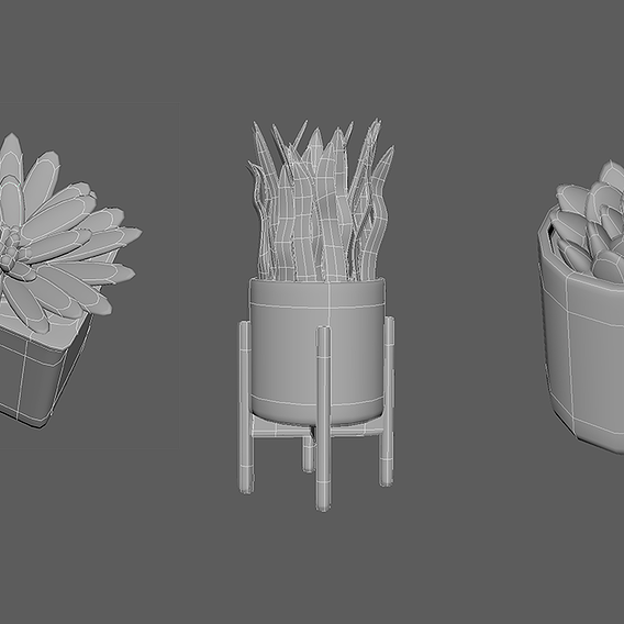 Succulent and Plant Models Shaded