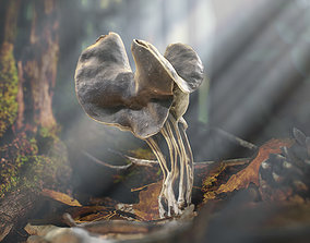 Realistic Forest Mushrooms - Helvella Lacunosa 3D model