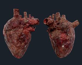 3D asset Heart Human Organ Game Ready 04