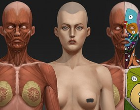 Woman anatomy study 3D asset