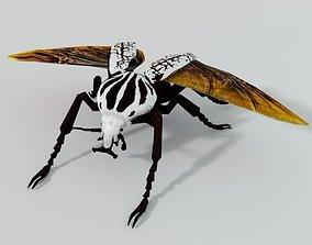 Beetle Goliath 3D model