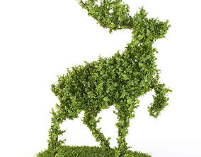 Bush - the Wood deer 3D model plant