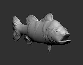 TUCUNARE - BRASILEIRO 3D printable model