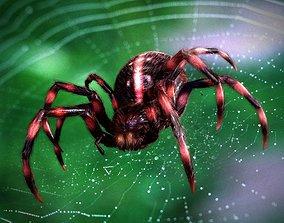 3D model Spider black widow tarantula spider human face
