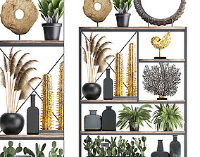 Shelf with reeds and plants coral decor 3D