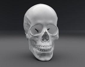 3D printable model Human Skull Realistic