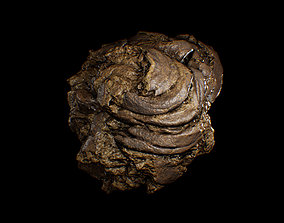 3D model Animal Dung Feces - Horse and Cow Photoscanned