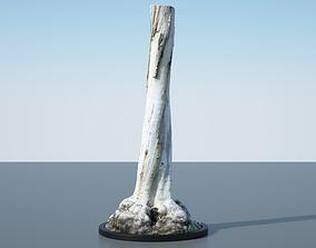 Tree Trunk - 12 3D model