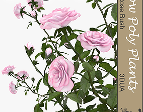 Rose bush universal plant 3D asset