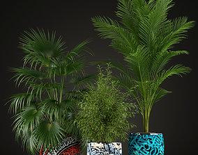 Plants collection 199 3D