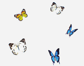 3D asset Animated Low Poly Art Several Butterflie Insect