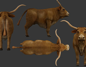 bull 3d rigged game-ready