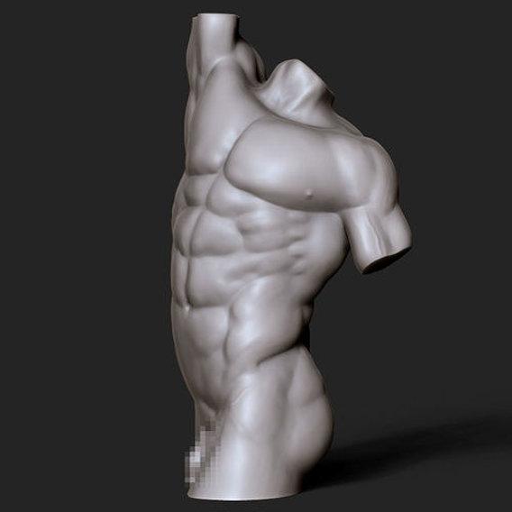 male torso sculpt