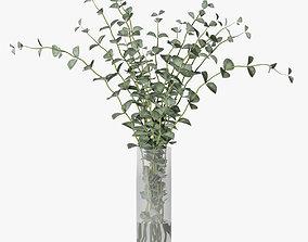 3D model eucalyptus 03