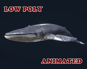 Low Poly Blue Whale 3D Model - animated