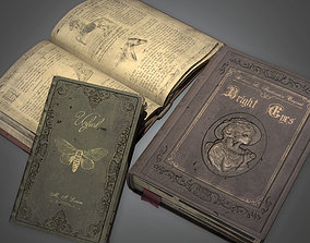3D asset Stack of Literature Books Antiques - PBR Game