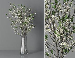 3D Cherry blossom 03