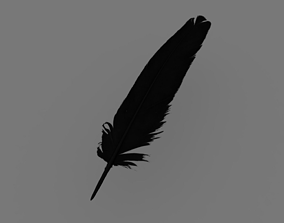 3D asset Feather Black Contour