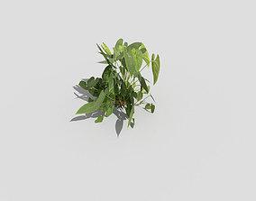pot Plant 3D asset realtime