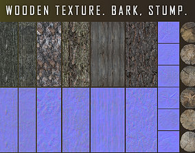 3D model Wooden texture Bark Stump