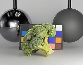 Cob of broccoli 27 3D asset