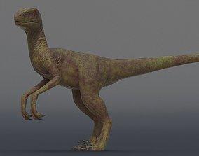 velociraptor Velociraptor 3D asset animated low-poly