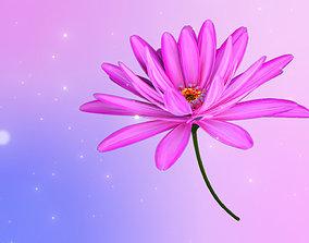 3d Daisy Flower Animated animated
