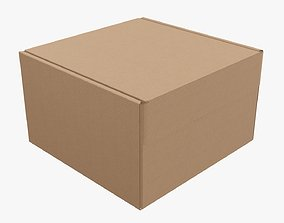 3D Corrugated cardboard box packaging 04