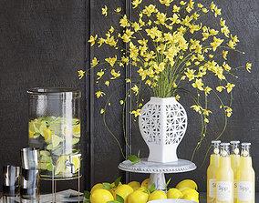 Yellow flowers and lemons 3D model