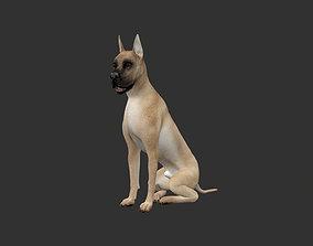 ANML-023 Dog Animated animal 3D model