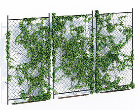 Ivy wall two 3D model