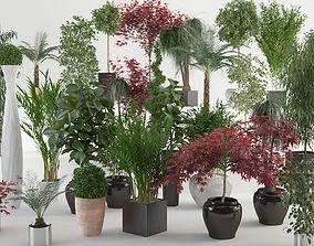 3D VP Interior Plants