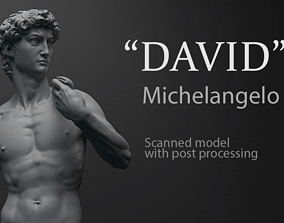 David Michelangelo 3D printable model anatomy