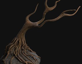 Old tree 2 old 3D