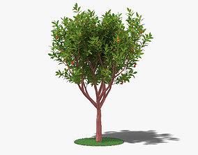3D Strawberry Tree