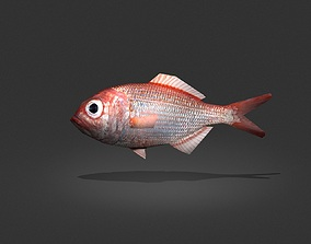 3D model Lutjanus Vivanus