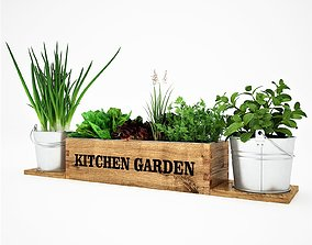 3D model Realistic kitchen garden herbs
